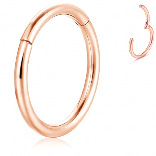 Titanium G23 Hinge Segment Ring - Rose Gold - Quality tested by Sheffield Assay Office England